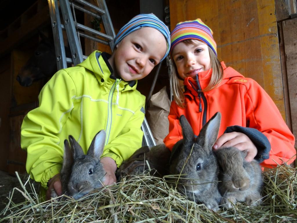 Anton und Johanna mit Belgisch-Riesen-Jungtieren
