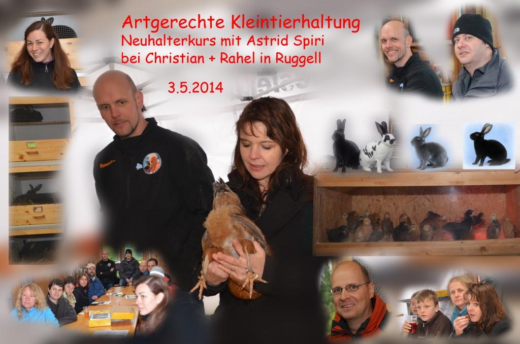 CollageNeuhalterkurs2014_bearbeitet-2