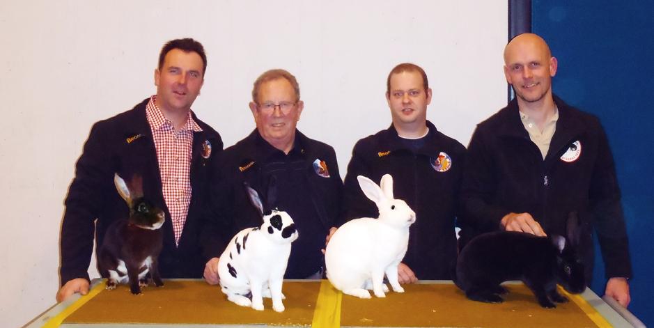 Patrick Marxer, Fritz Marxer, Martin Amann und Christian Oehri (v.l.) vom OV Vaduz dominierten einmal mehr an der Clubschau von Chinchilla- und Rexkaninchen Schweiz
