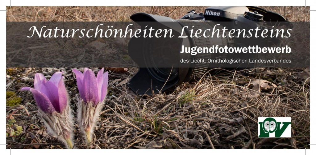Fotowettbewerb_Page_1